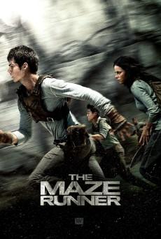 maze_runner_ver13_xlg